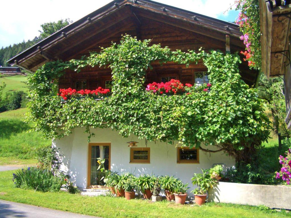 Vakantiewoning huren in Alpbach
